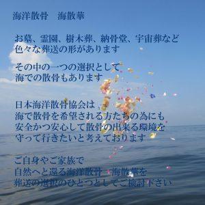 海洋散骨 海散華